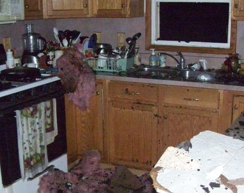 home fire in a kitchen