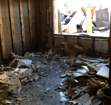 debris in home