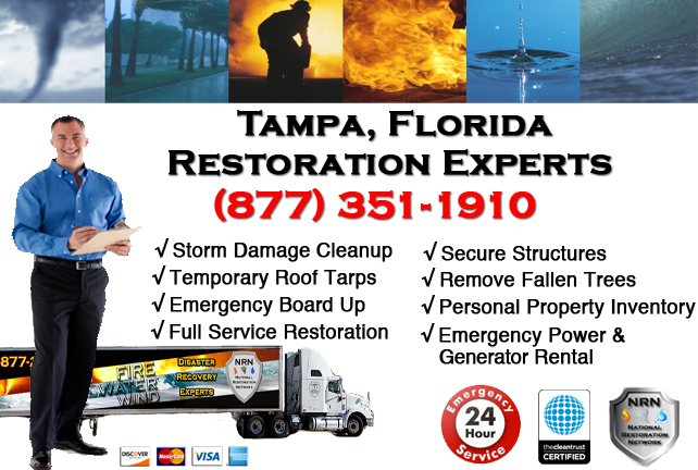 Tampa Storm Damage Cleanup