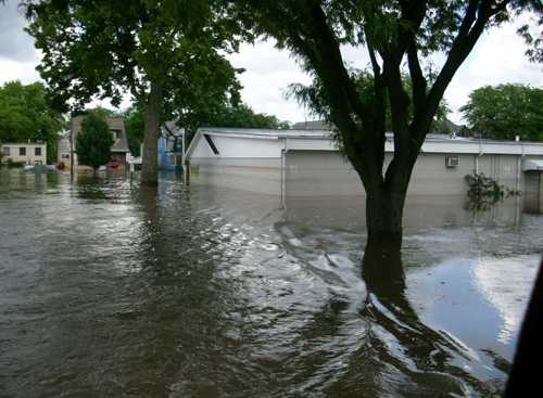 trees and mobile home underwater