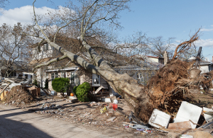 repair and cleanup for storm damages