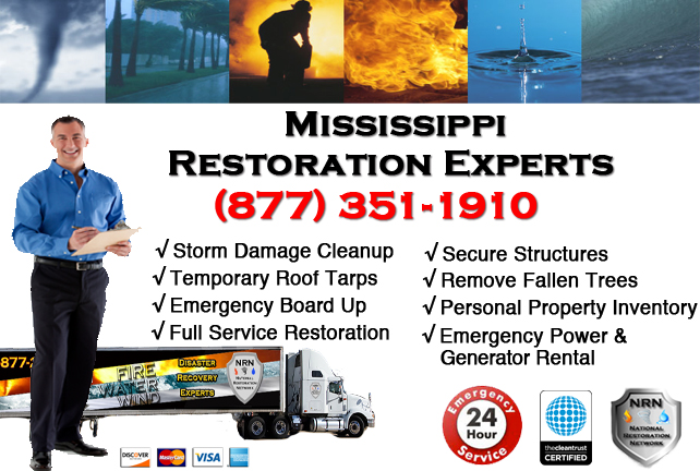 Mississippi Storm Damage Cleanup