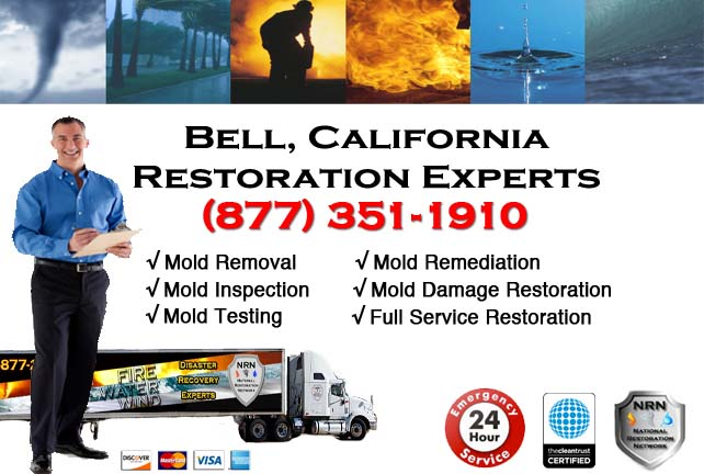 Bell storm damage repairs