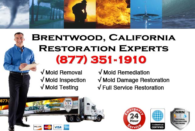 Brentwood storm damage repairs
