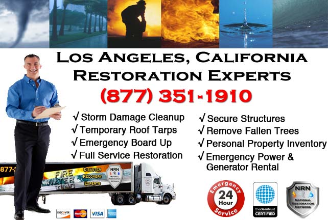 Los Angeles storm damage repairs