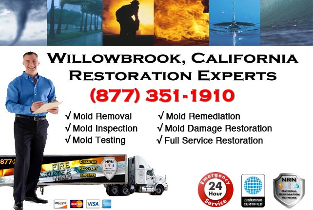Willowbrook water damage restoration