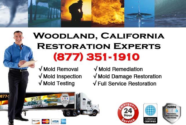 Woodland storm damage repairs